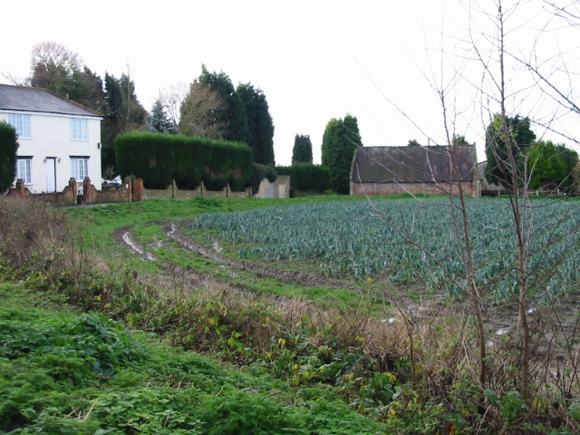 Leek fields and Coombe Farm.
