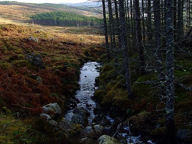 Linsidemore Wood, Aullt a Ghugheran