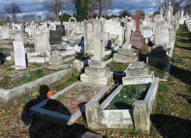 St Patrick's Cemetery, Langthorne Road, Leytonstone, London E11