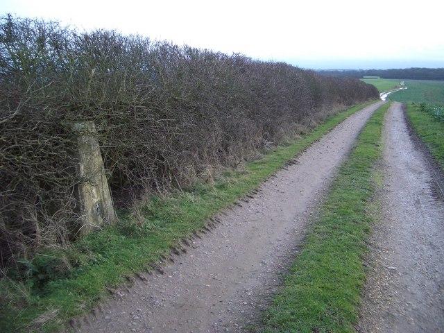 Trig Point near Lavendon Wood