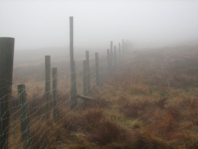 Fence by Benyellary path