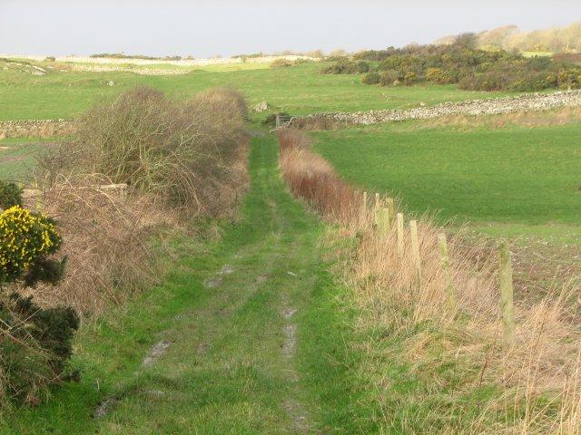 Farm track, Rispain