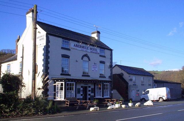 The Abermule Hotel