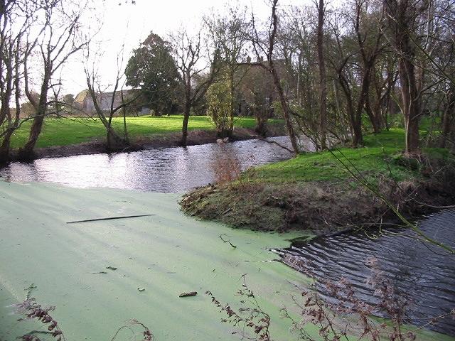 Pond near Goss Hall.