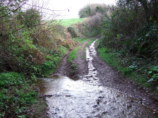 Ford on green lane
