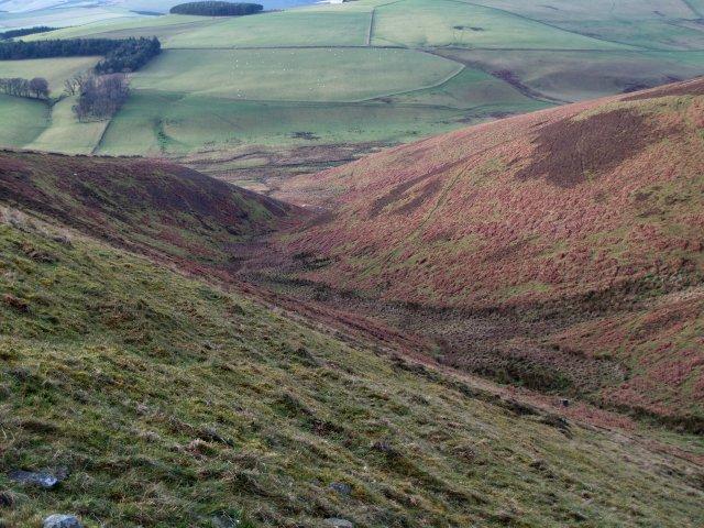 Bracken slopes, Clints Hill.