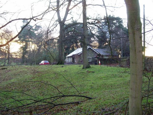 Lodge near Plas Newydd Farm