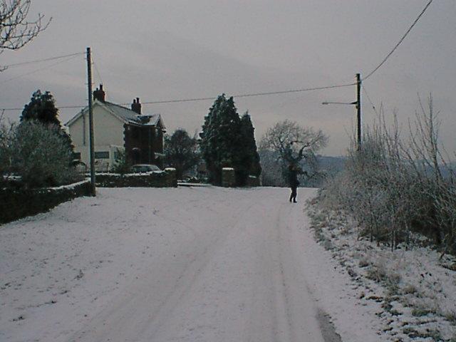 Martins Lane View