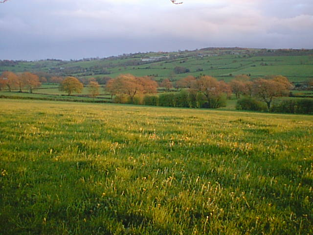 View across fields to Press, Alton and Ashover Rock