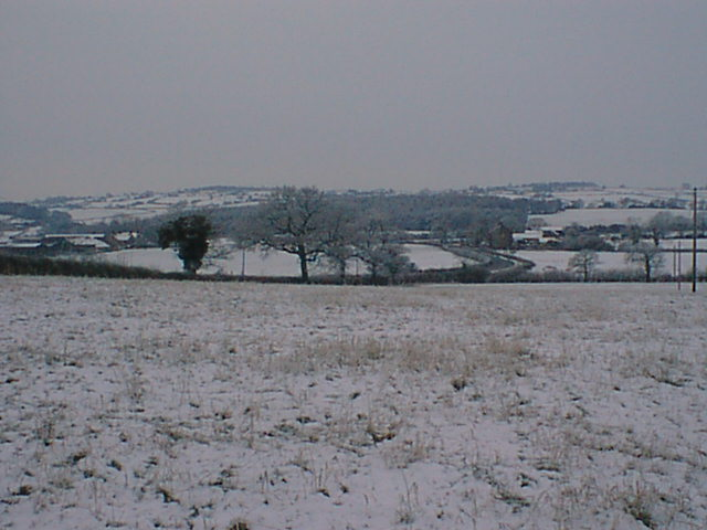 View across field to Ashover Road (Britton Wood in Background)