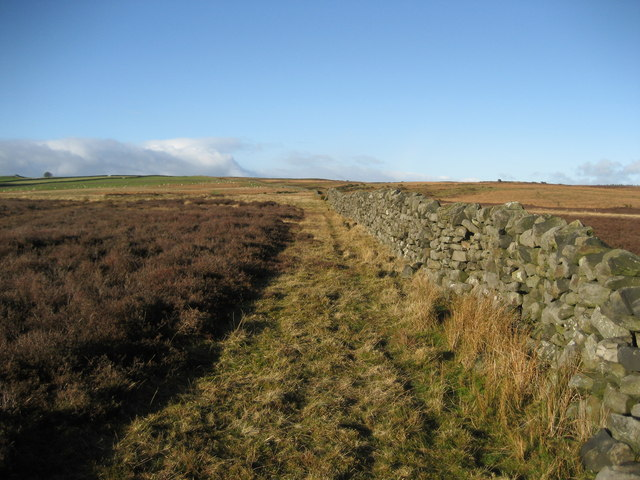 Wall over Tranmire Bog
