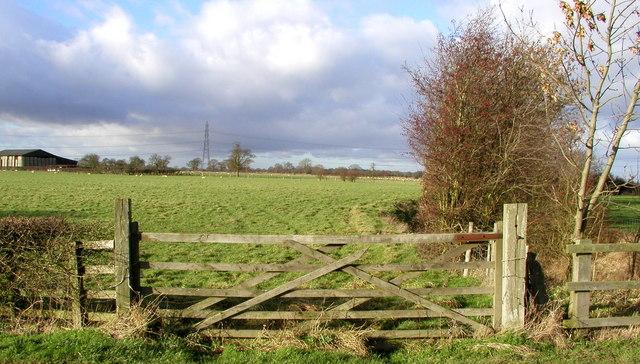 Field next to Foss Dike