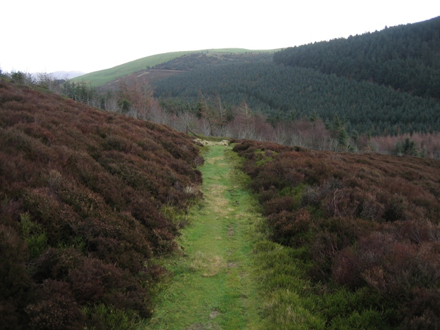 Ancient Track above Bwlch Penbarras