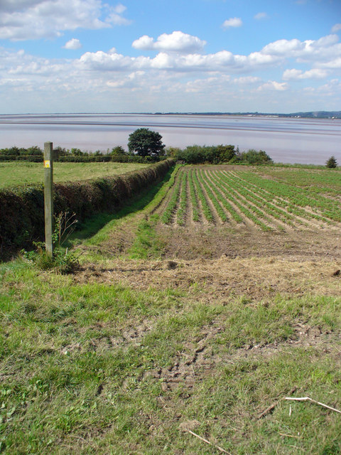Public Footpath to the Humber Bank