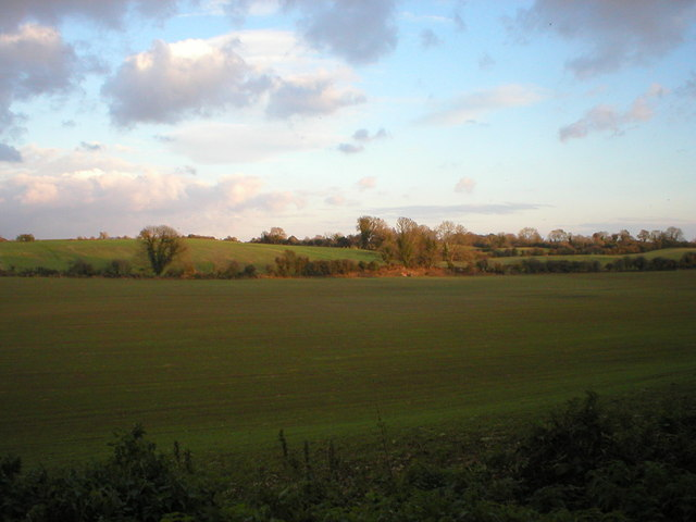 Field View, West