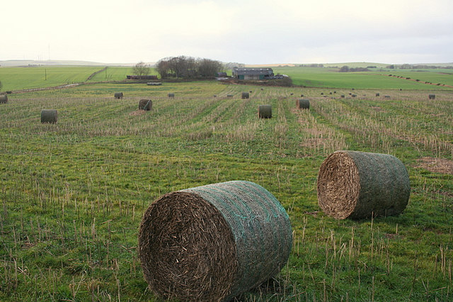 Straw rolls with Denhill Farm in the distance.