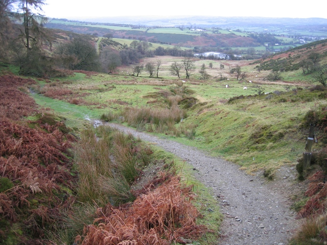 The Clwydian Way - South West of Cilcain