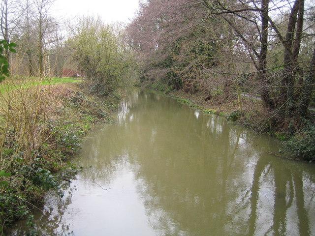 River Arun in Horsham