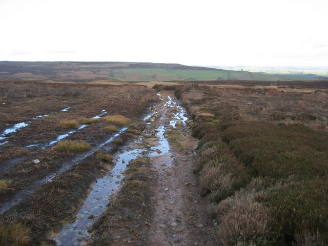Track across Witton Moor