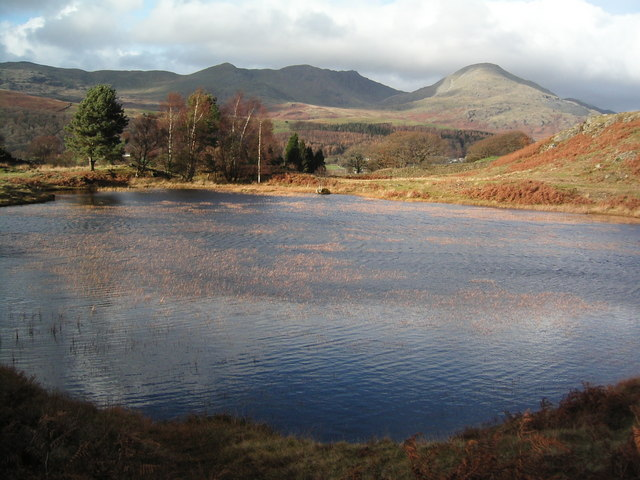 Kelly Hall Tarn on Torver Back Common