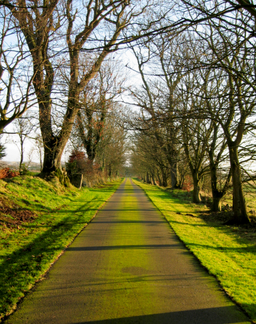 The road to Knockhall in late winter