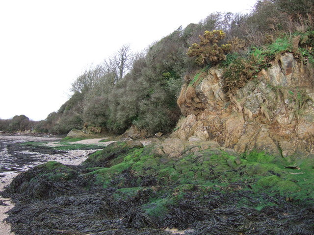 Cliff and foreshore approaching West Charleton Marsh