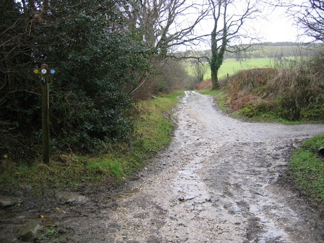 The Clwydian Way/Taith Clwyd and Ancient Tracks