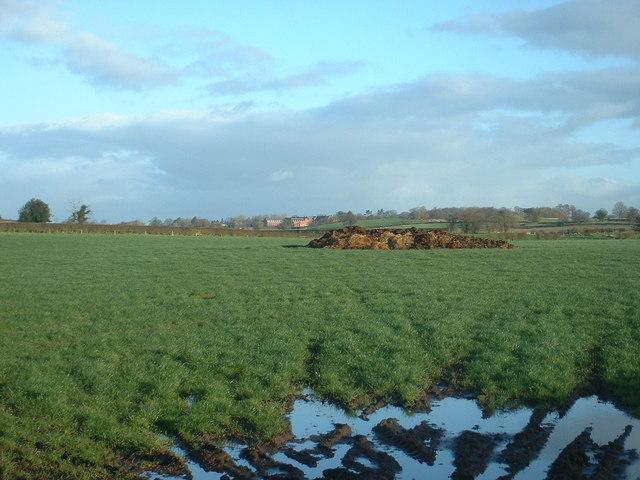 Farmland near Tetchill