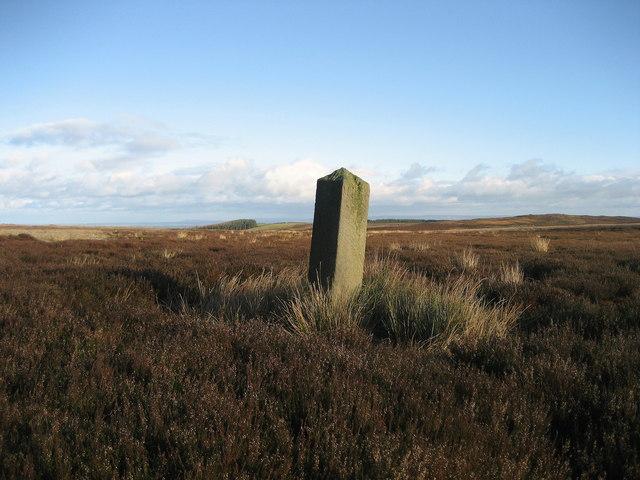 Isolated Boundary Stone