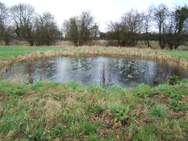 Dew pond in the Nature Reserve