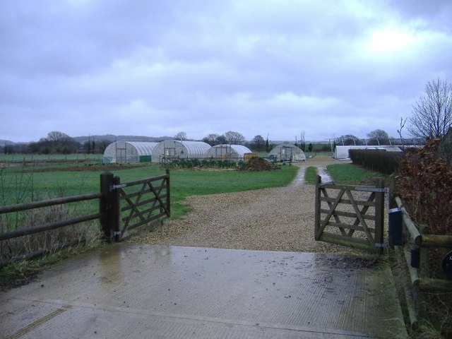 Hedgerow nursery, Sutton Lane