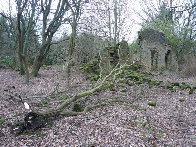Bottom Moor (Fallen Tree and Derelict Building)