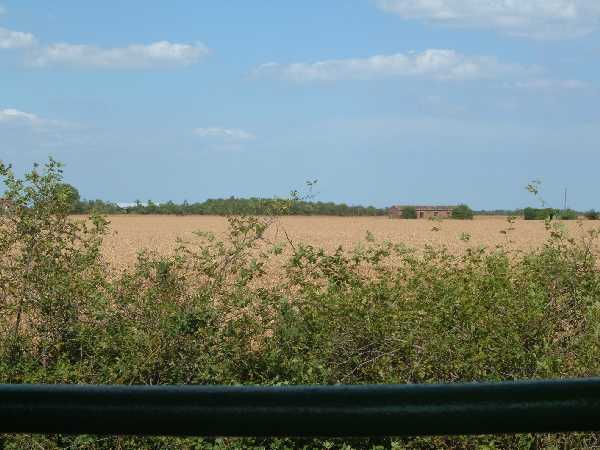 Foulness countryside
