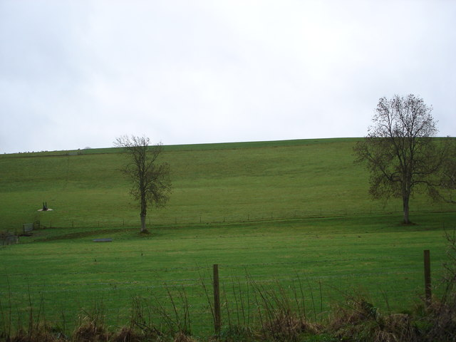 Downland opposite Prescombe House