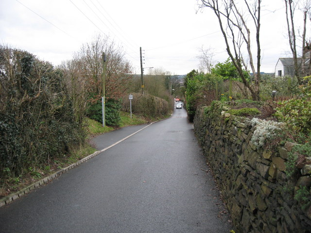 Bass Lane with Passing Place