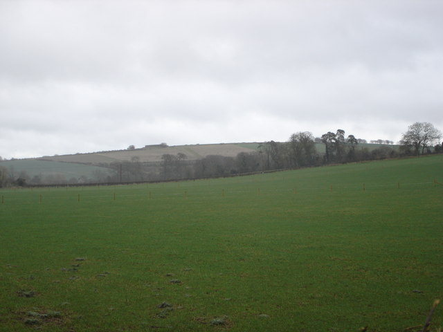 Downland near Bowerchalke