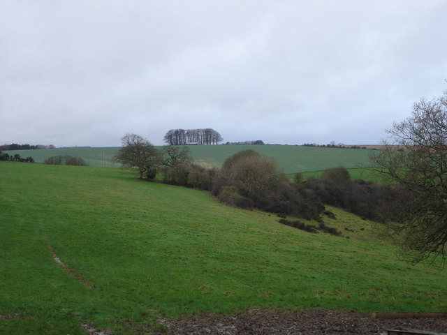 View from Cow Down Hill