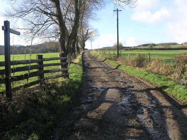 Flowing Footpath