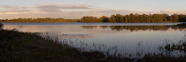 Fen Drayton Nature Reserve