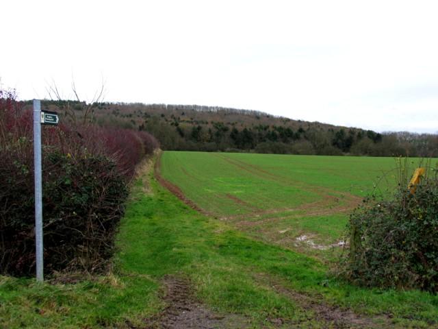 Footpath to Stoke Dry Wood