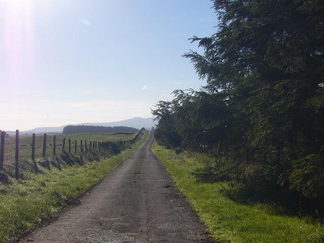 Roman road WNW of Trecastle