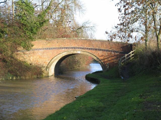 Bridge 50