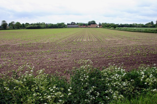 Malthouse Farm across field