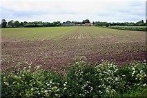 TF9322 : Malthouse Farm across field by John Robertson