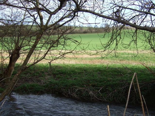 Sydling Water and bank with fields beyond