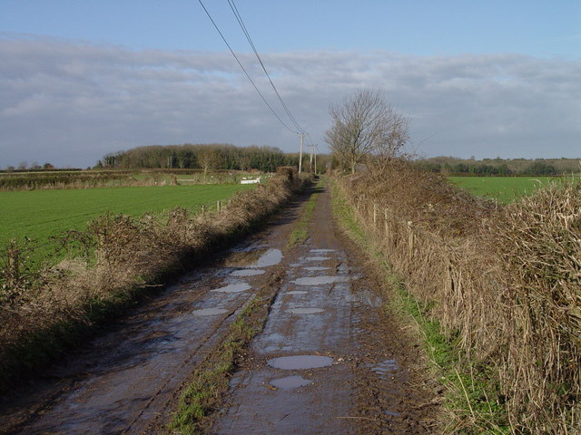 Track to Cuckoo Clump