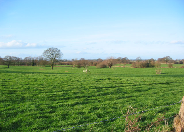 Pasture near Marley Green