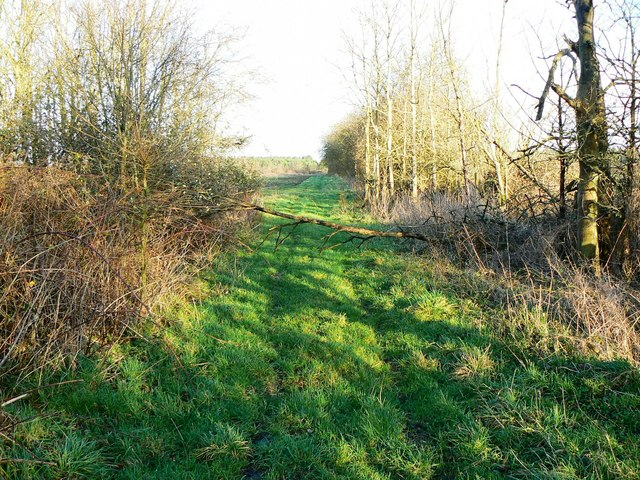 Bridleway west of A361 facing east
