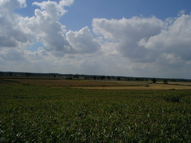 View from the Maize Maze