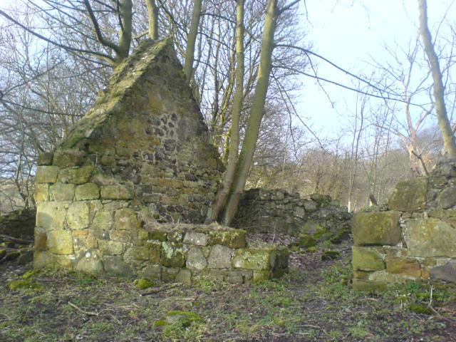 Ruined house near the Binn.